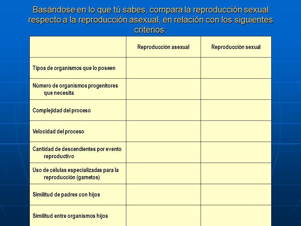 Basándose en lo que tú sabes, compara la reproducción sexual respecto a la reproducción asexual, en relación con los siguientes criterios: