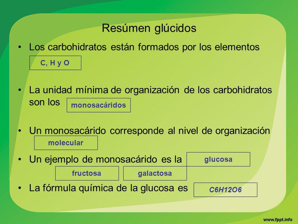 Resúmen glúcidos Los carbohidratos están formados por los elementos
