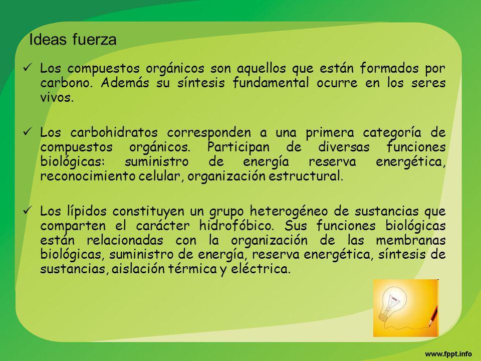 Ideas fuerza Los compuestos orgánicos son aquellos que están formados por carbono. Además su síntesis fundamental ocurre en los seres vivos.