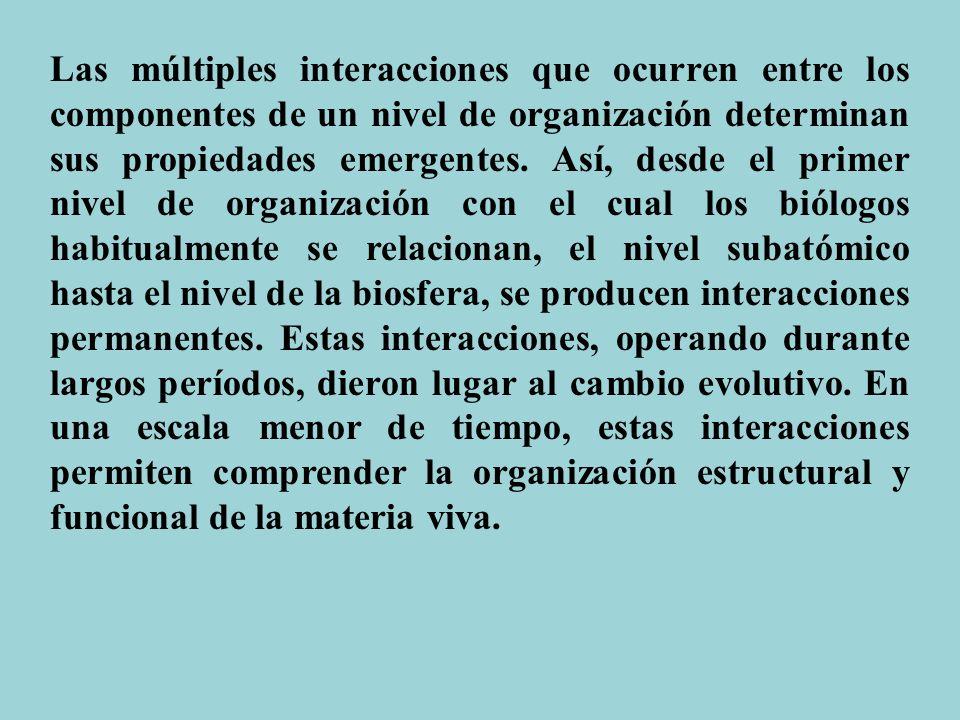 Las múltiples interacciones que ocurren entre los componentes de un nivel de organización determinan sus propiedades emergentes.
