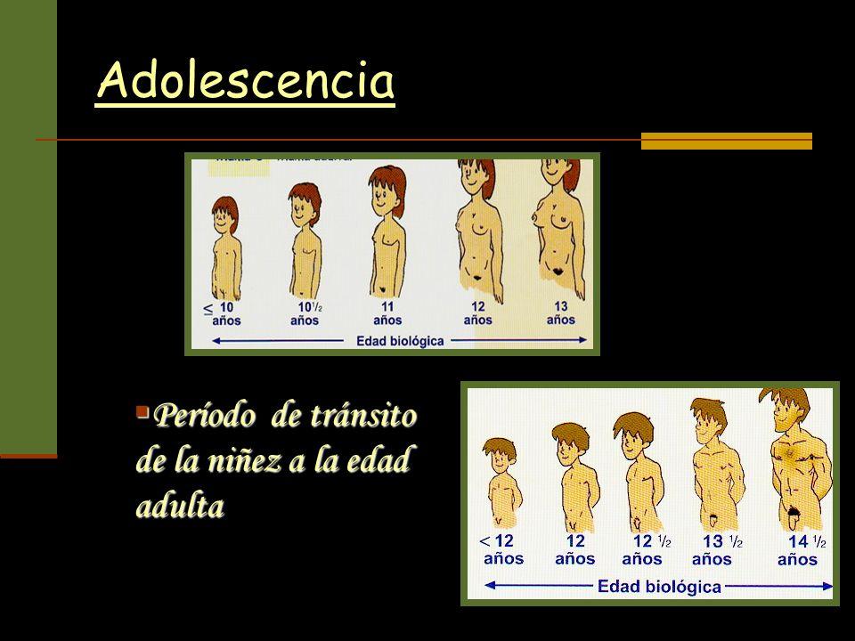 Adolescencia Período de tránsito de la niñez a la edad adulta