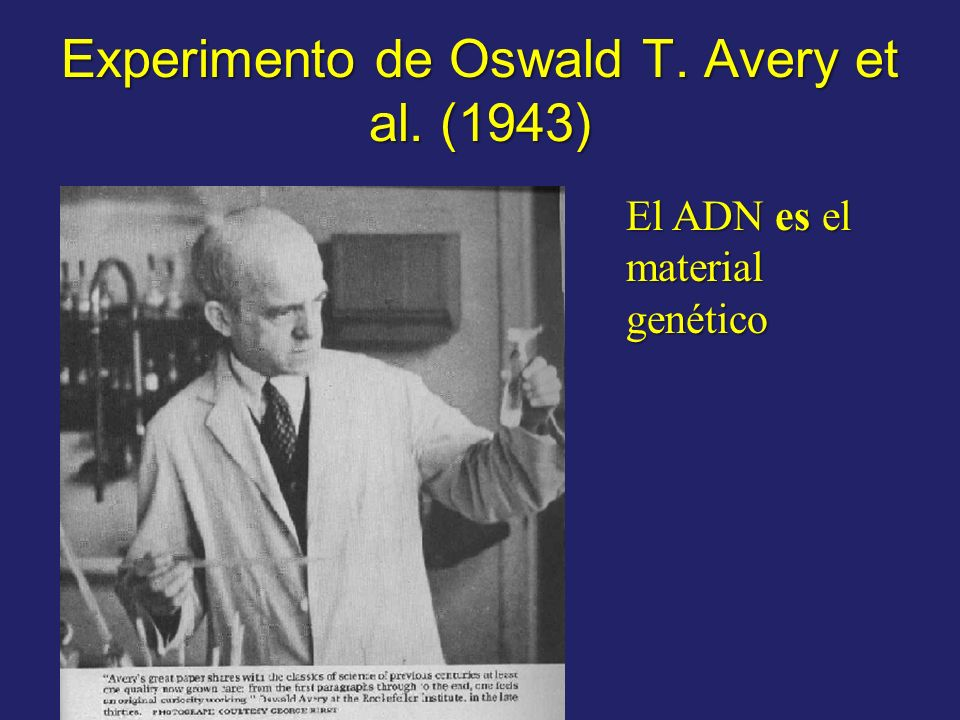 Experimento de Oswald T. Avery et al. (1943)