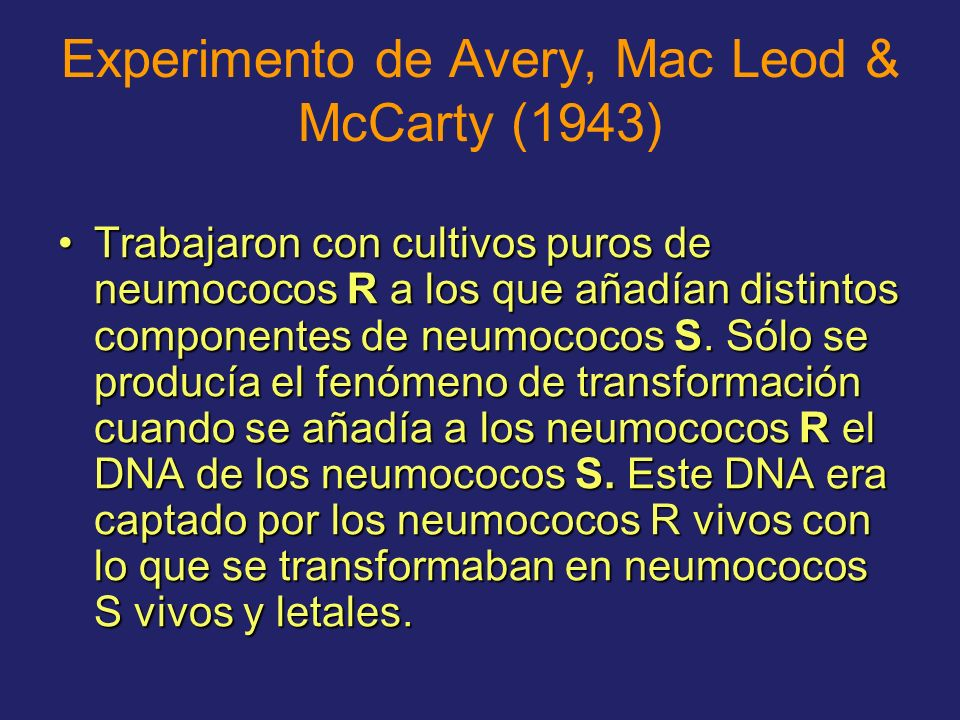 Experimento de Avery, Mac Leod & McCarty (1943)