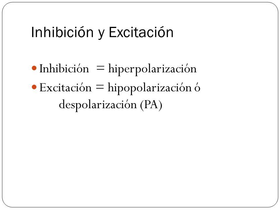 Inhibición y Excitación