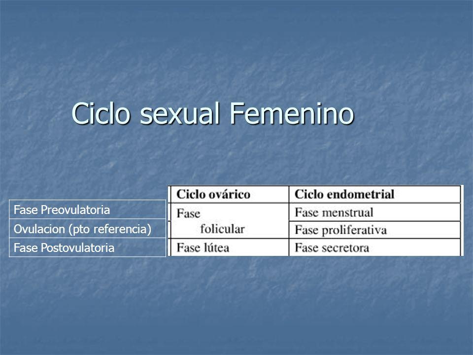Ciclo sexual Femenino Fase Preovulatoria Ovulacion (pto referencia)