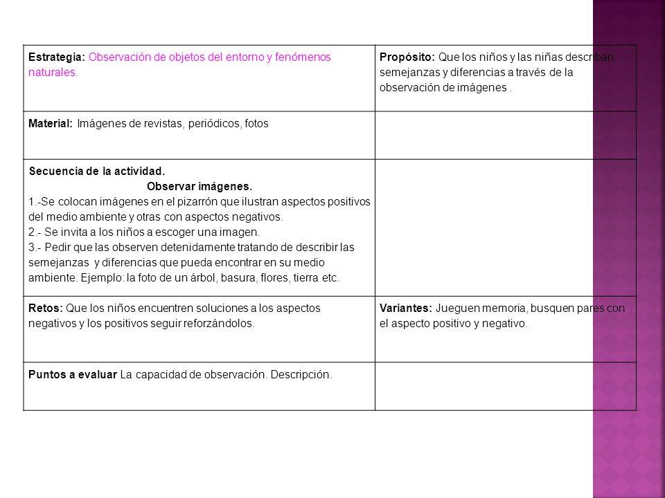 Estrategia: Observación de objetos del entorno y fenómenos naturales.