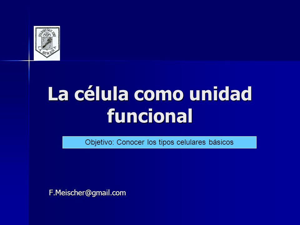 La célula como unidad funcional