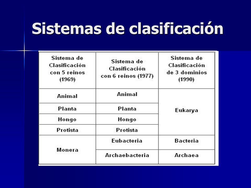 Sistemas de clasificación