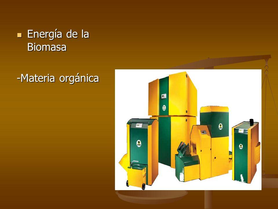 Energía de la Biomasa -Materia orgánica