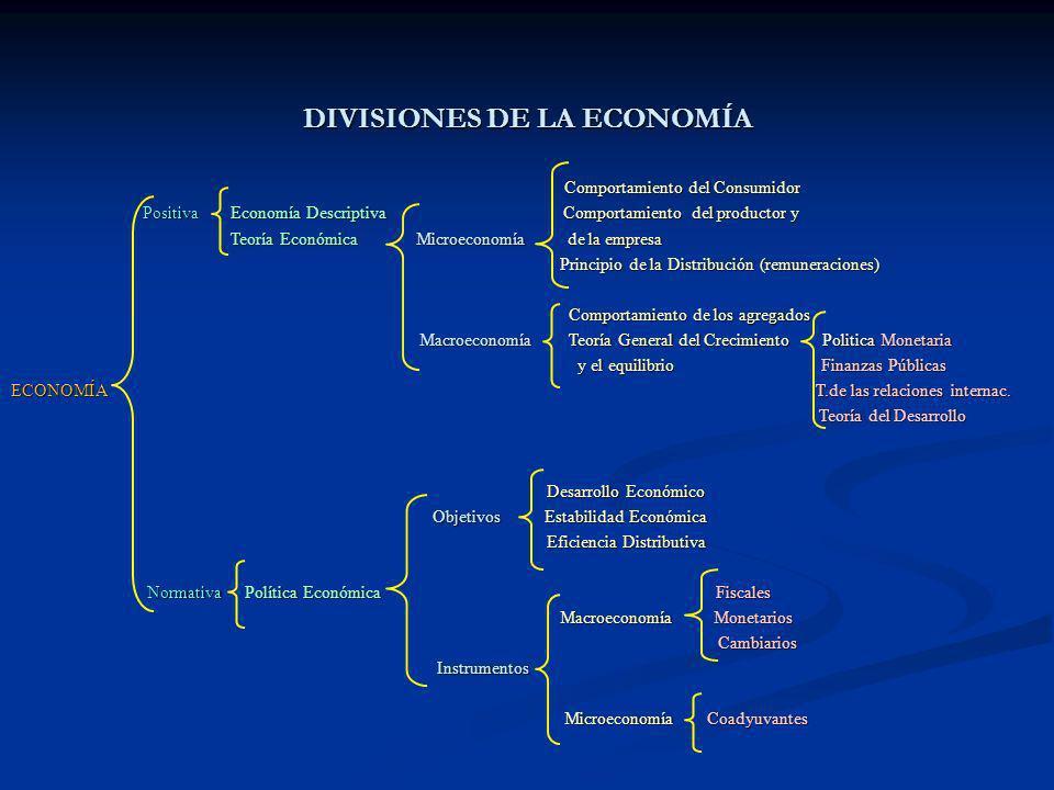 DIVISIONES DE LA ECONOMÍA