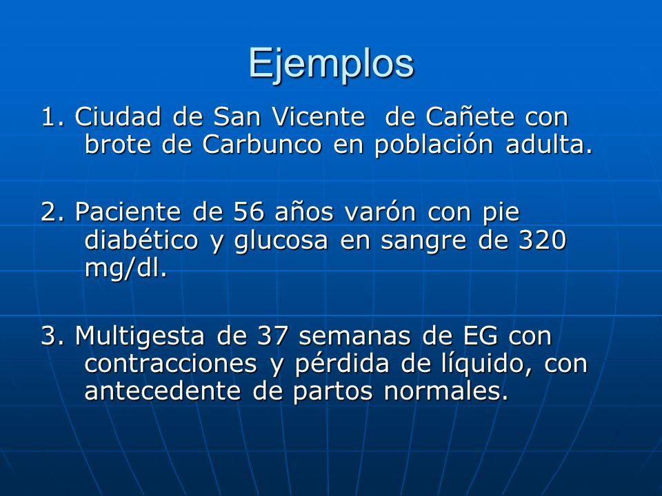 Ejemplos 1. Ciudad de San Vicente de Cañete con brote de Carbunco en población adulta.