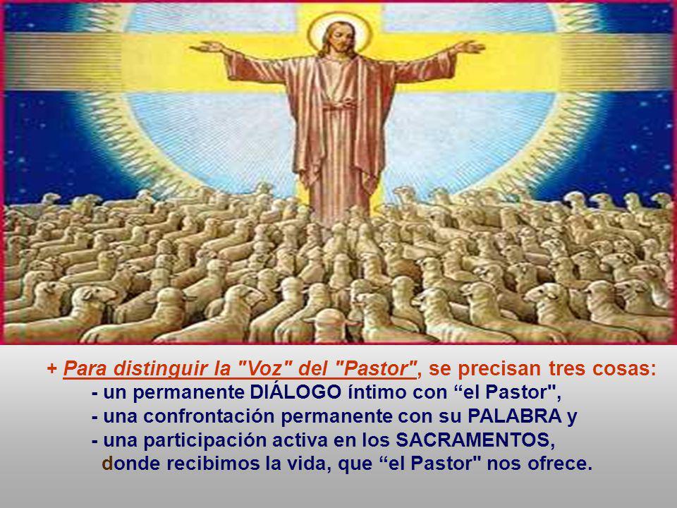 - un permanente DIÁLOGO íntimo con el Pastor ,