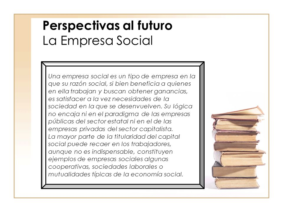 Perspectivas al futuro La Empresa Social
