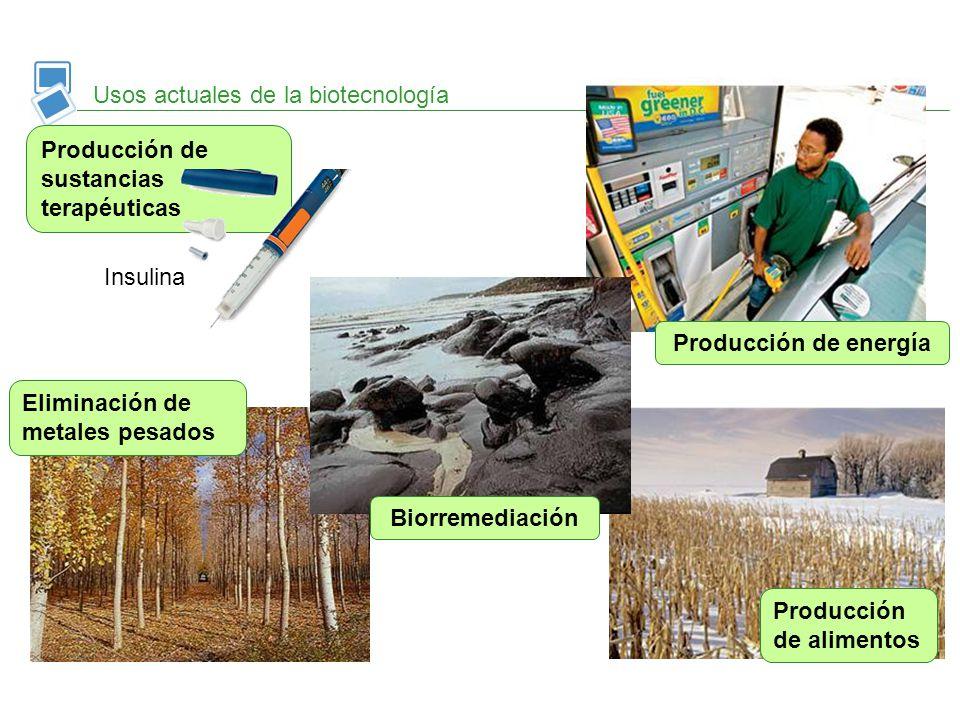 Usos actuales de la biotecnología