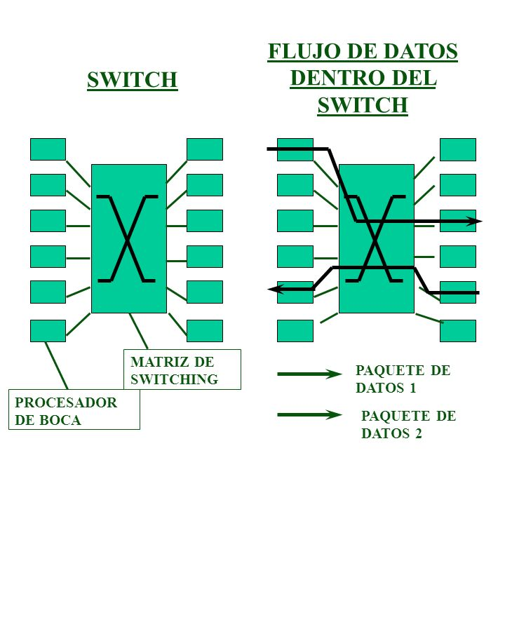 FLUJO DE DATOS DENTRO DEL SWITCH