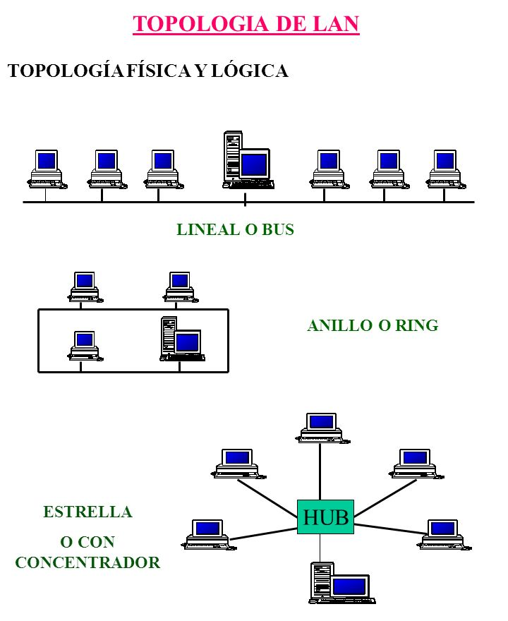 TOPOLOGIA DE LAN HUB TOPOLOGÍA FÍSICA Y LÓGICA LINEAL O BUS