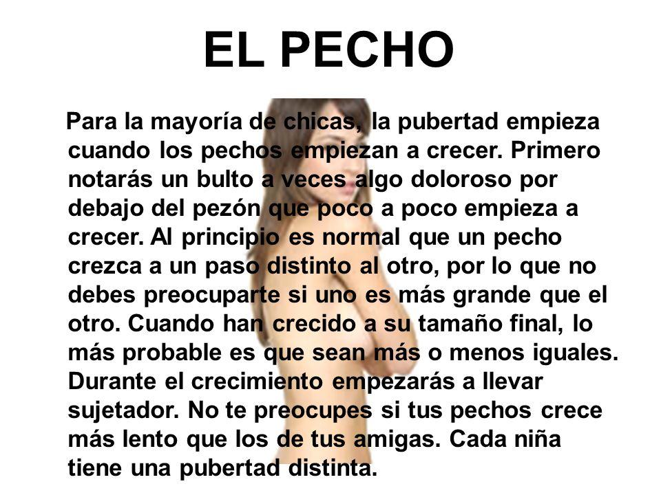 EL PECHO