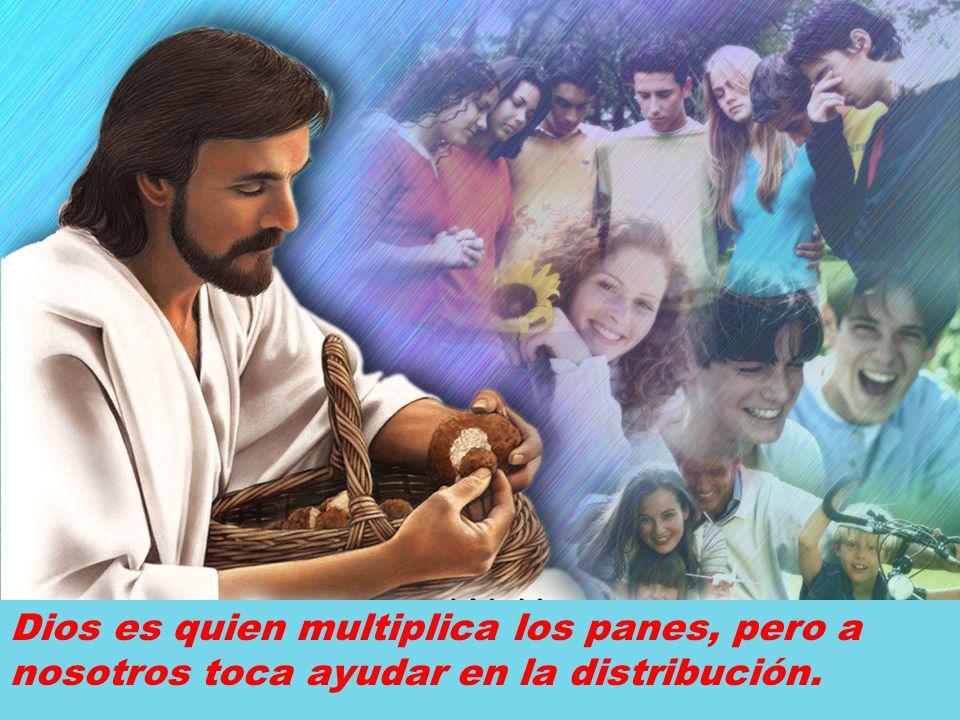 Dios es quien multiplica los panes, pero a nosotros toca ayudar en la distribución.
