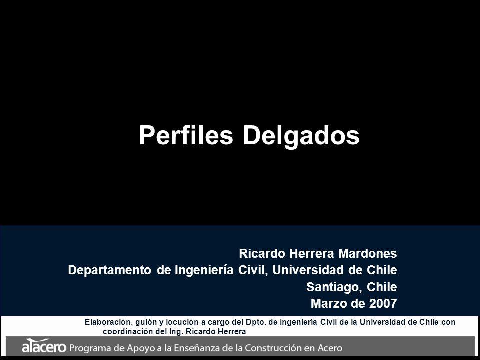Perfiles Delgados Ricardo Herrera Mardones