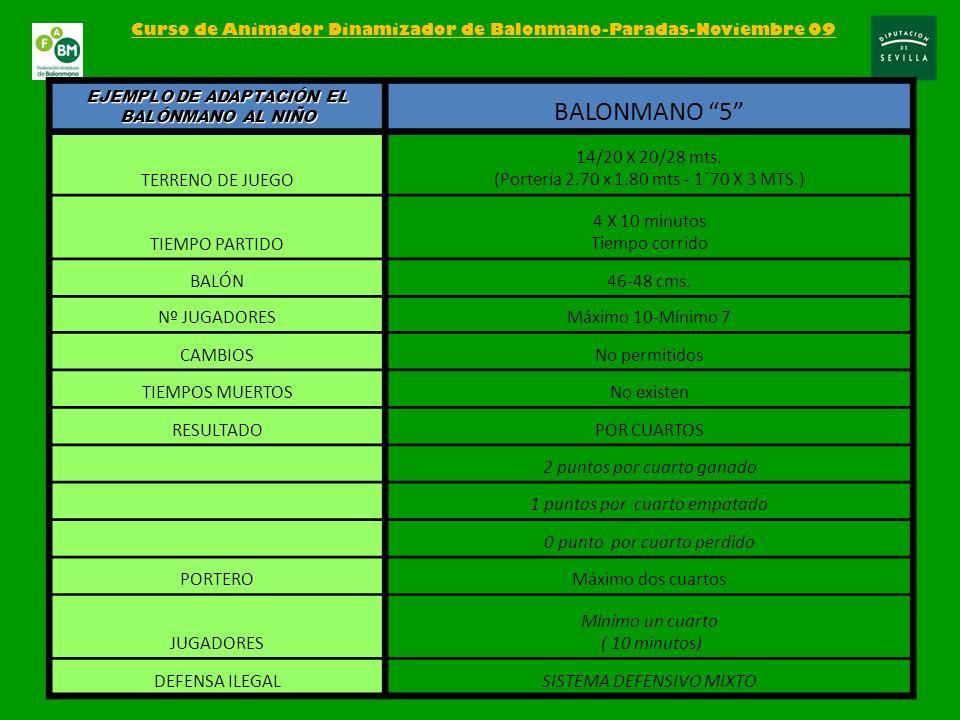 BALONMANO 5 TERRENO DE JUEGO 14/20 X 20/28 mts.