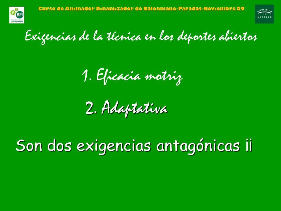2. Adaptativa 1. Eficacia motriz Son dos exigencias antagónicas ¡¡