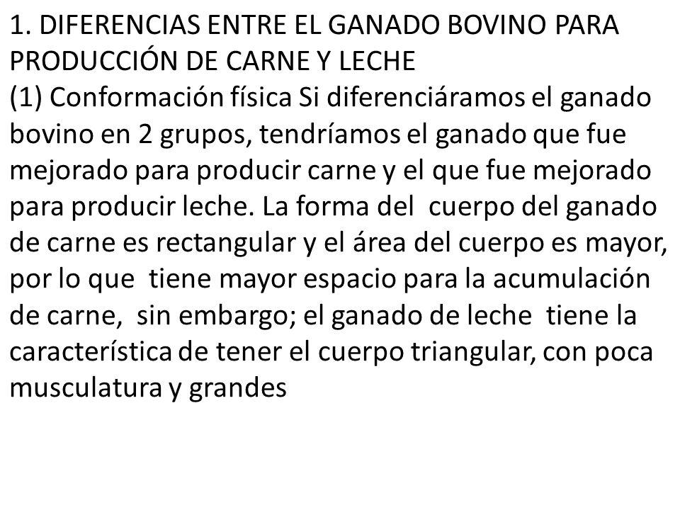 1. DIFERENCIAS ENTRE EL GANADO BOVINO PARA PRODUCCIÓN DE CARNE Y LECHE
