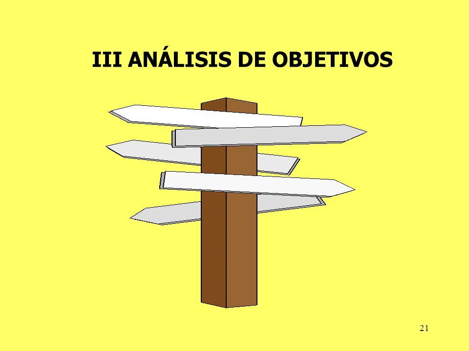 III ANÁLISIS DE OBJETIVOS