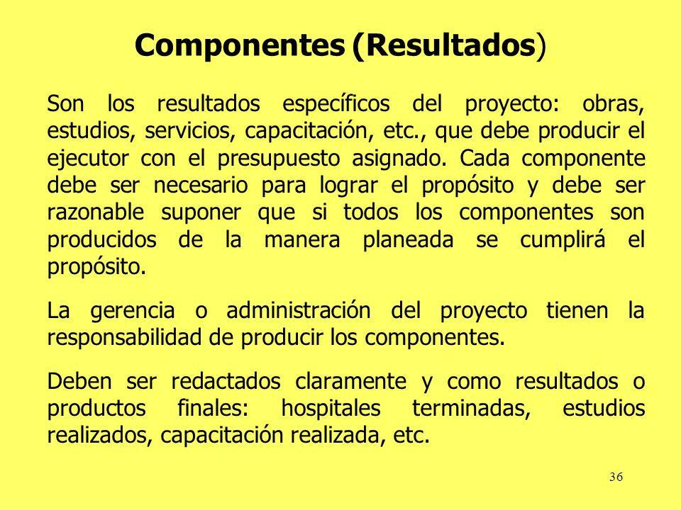 Componentes (Resultados)
