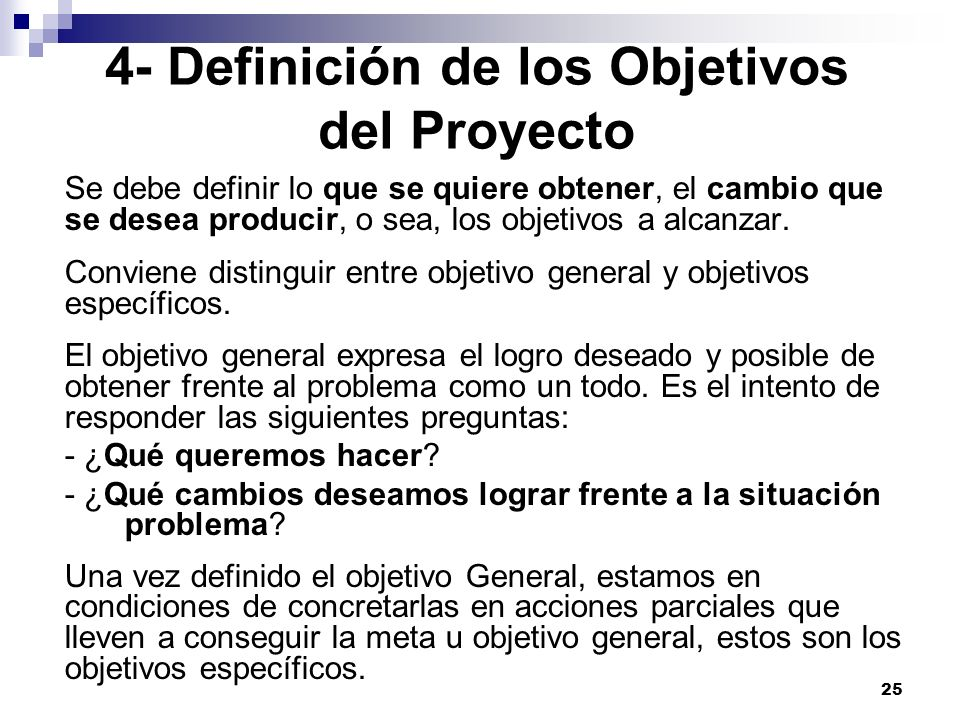 4- Definición de los Objetivos del Proyecto