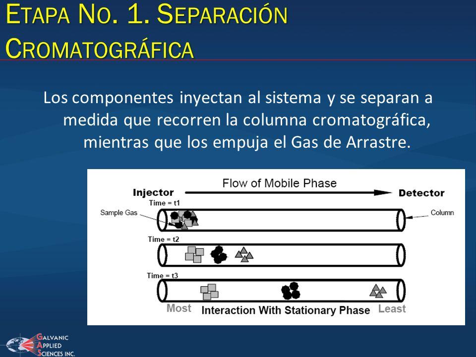 Etapa No. 1. Separación Cromatográfica