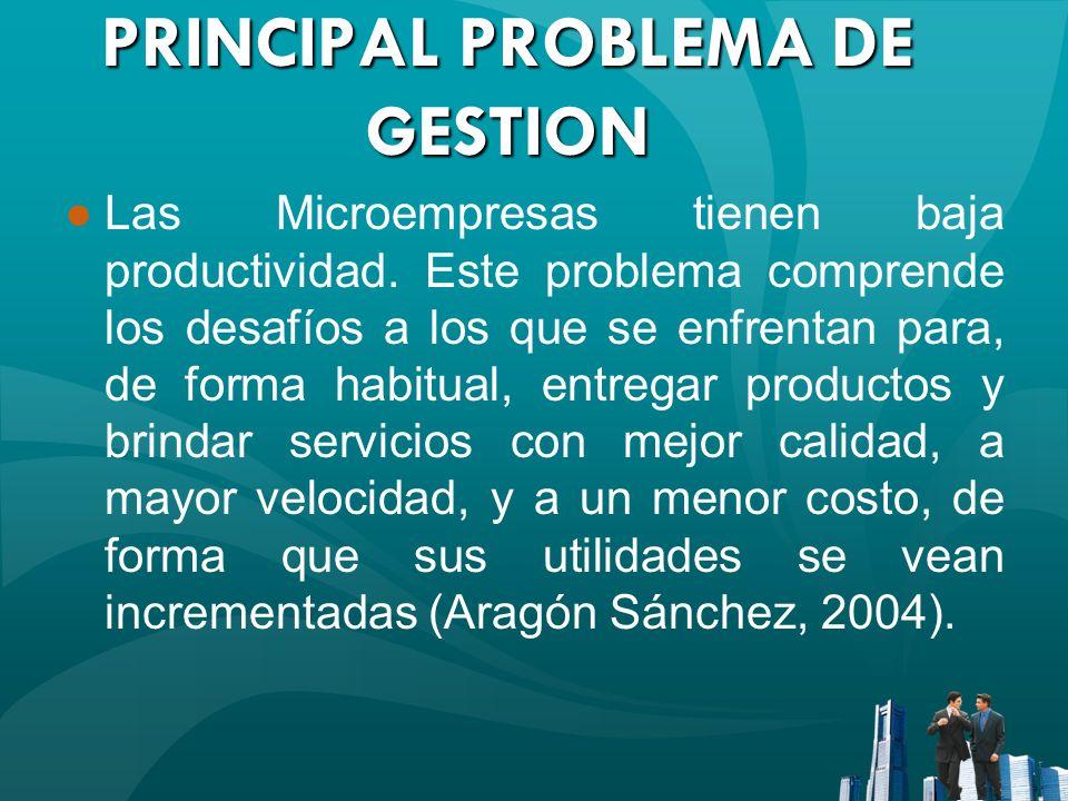 PRINCIPAL PROBLEMA DE GESTION