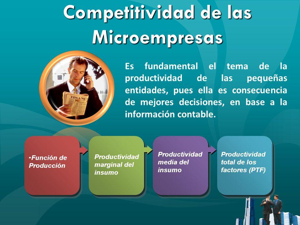 Competitividad de las Microempresas