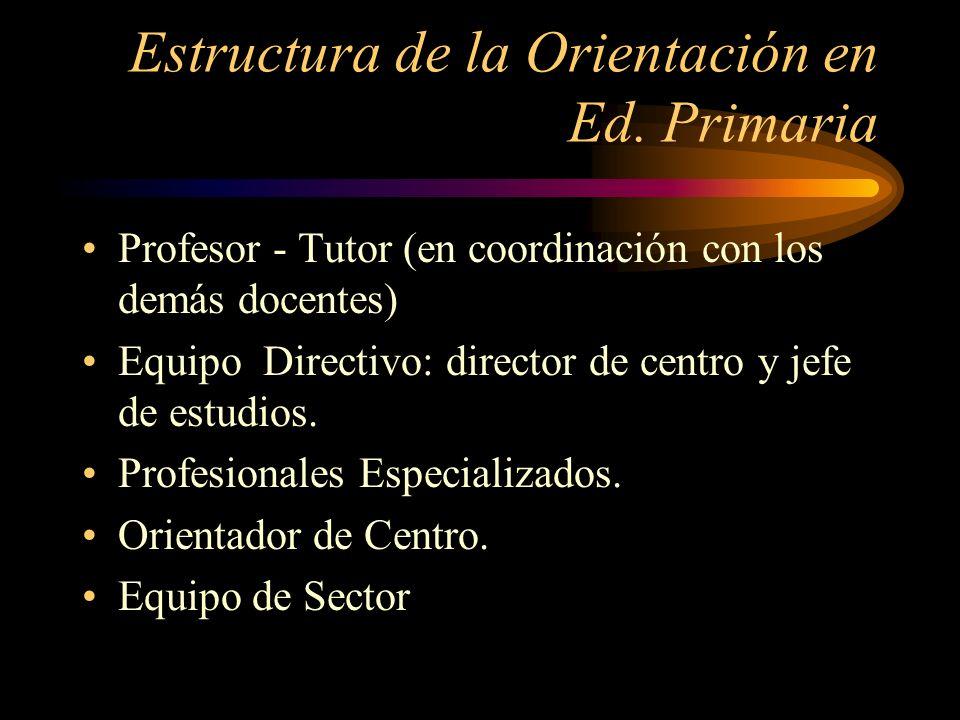 Estructura de la Orientación en Ed. Primaria