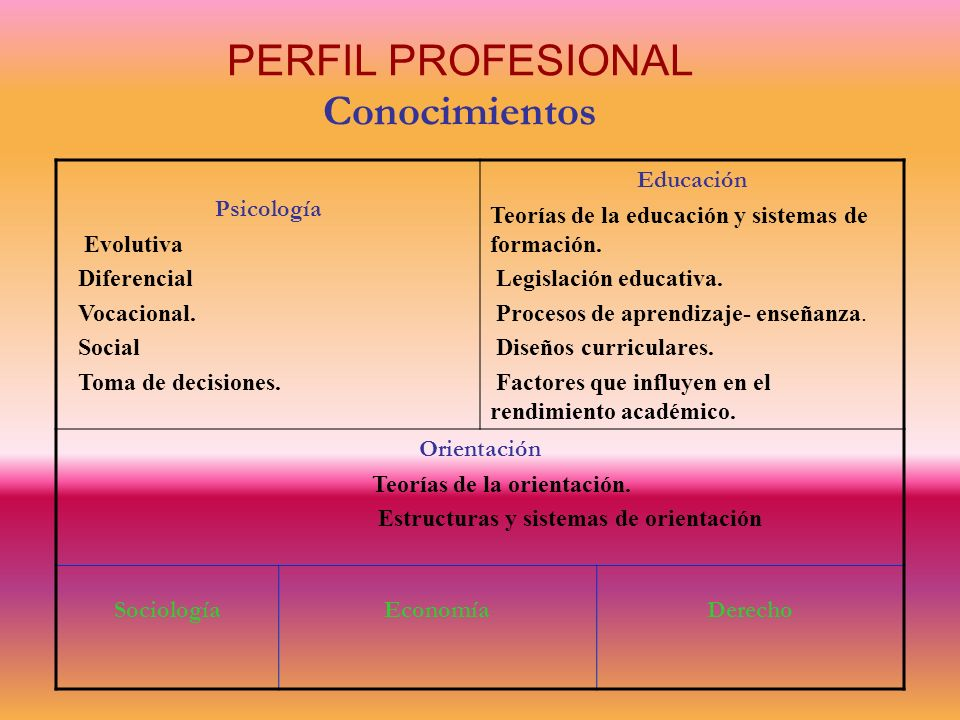PERFIL PROFESIONAL Conocimientos