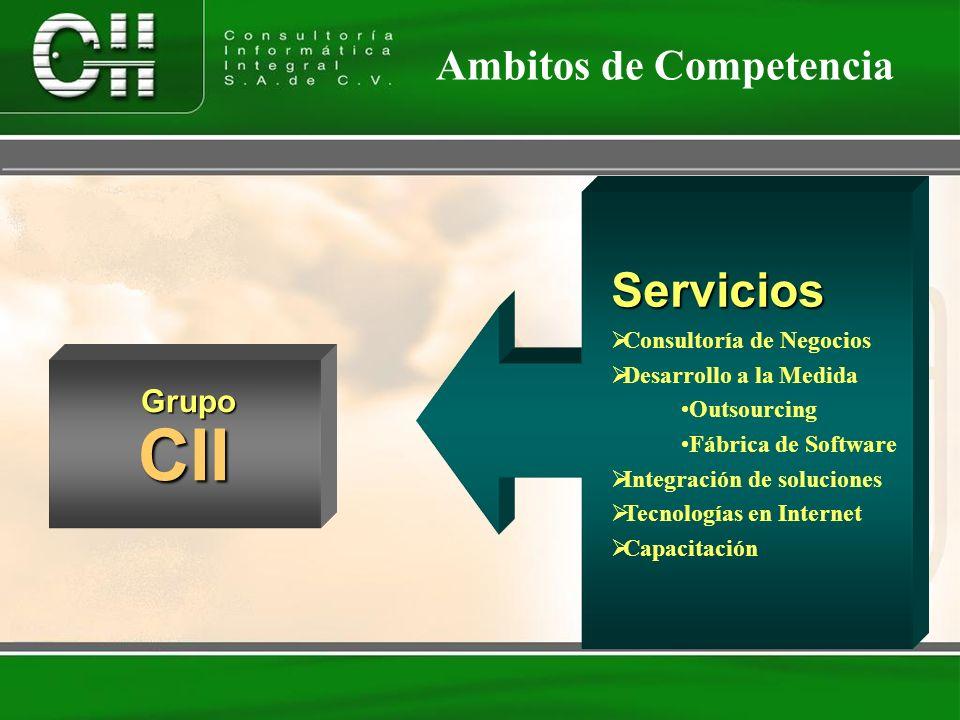 CII Servicios Ambitos de Competencia Grupo Consultoría de Negocios