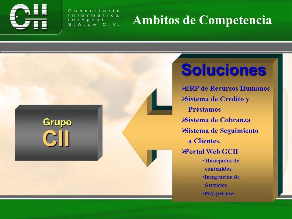 CII Soluciones Servicios Ambitos de Competencia Grupo