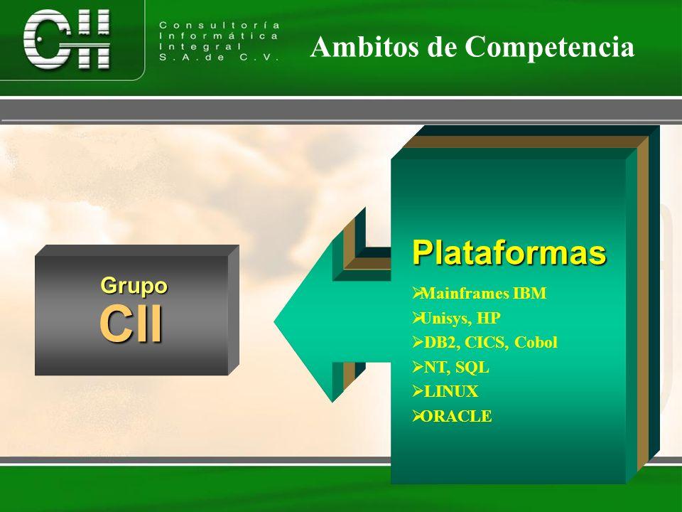 CII Soluciones Servicios Plataformas Ambitos de Competencia Grupo