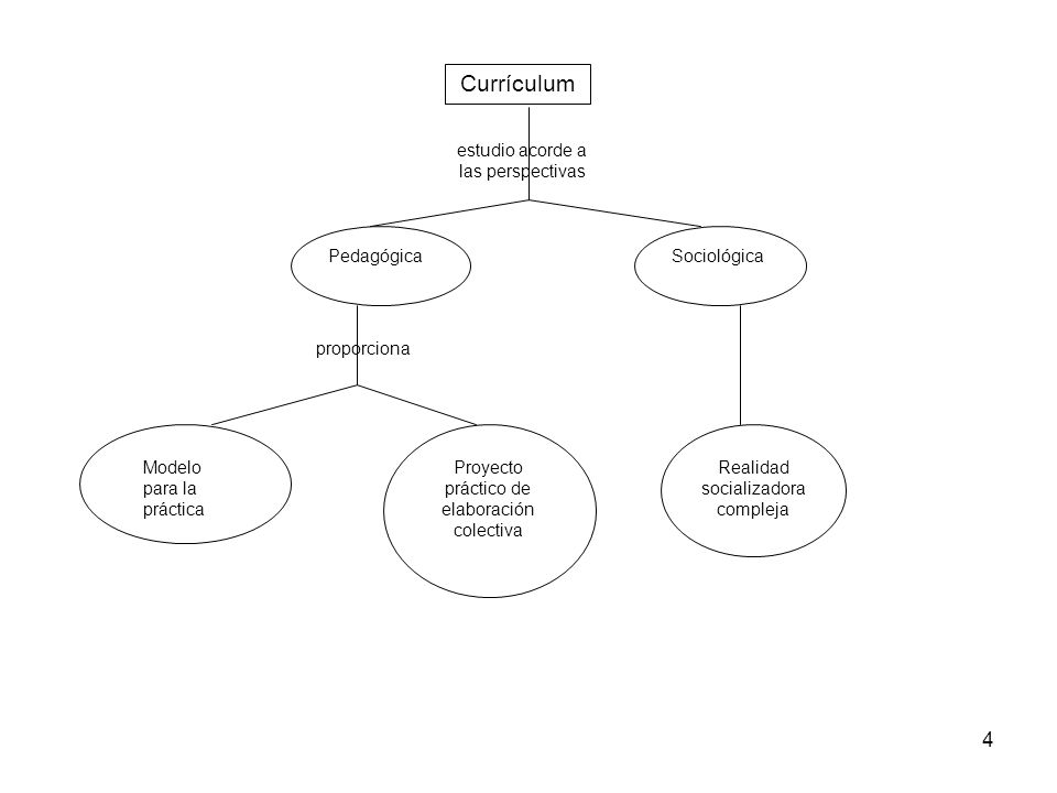 Currículum estudio acorde a las perspectivas Pedagógica Sociológica