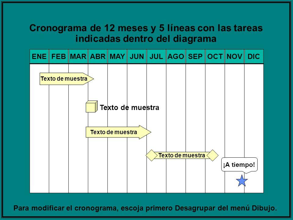 Cronograma de 12 meses y 5 líneas con las tareas indicadas dentro del diagrama