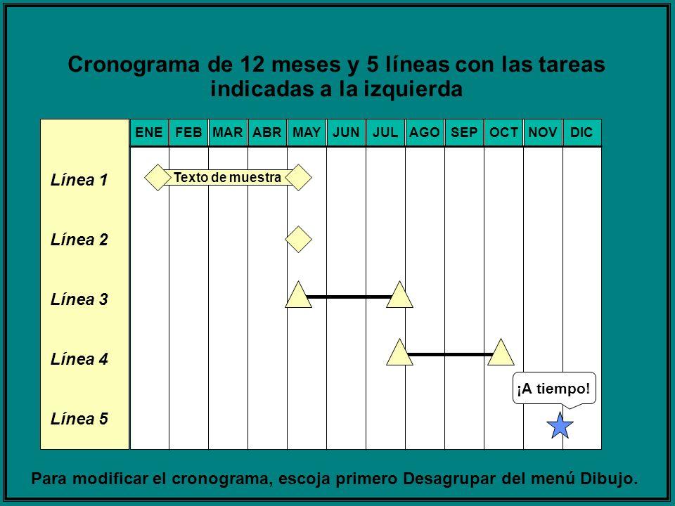 Cronograma de 12 meses y 5 líneas con las tareas indicadas a la izquierda