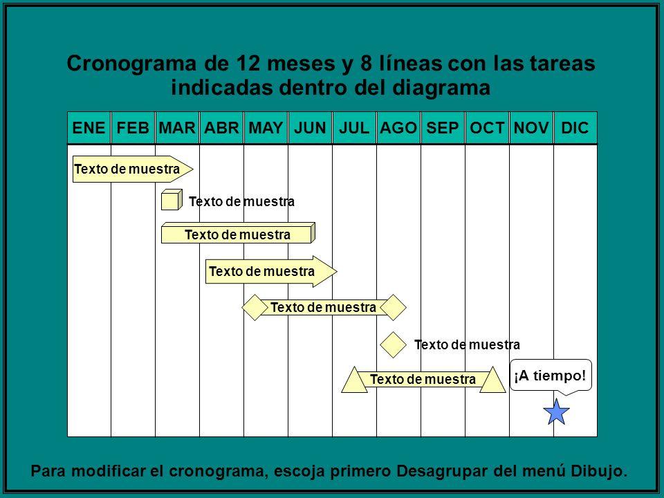 Cronograma de 12 meses y 8 líneas con las tareas indicadas dentro del diagrama