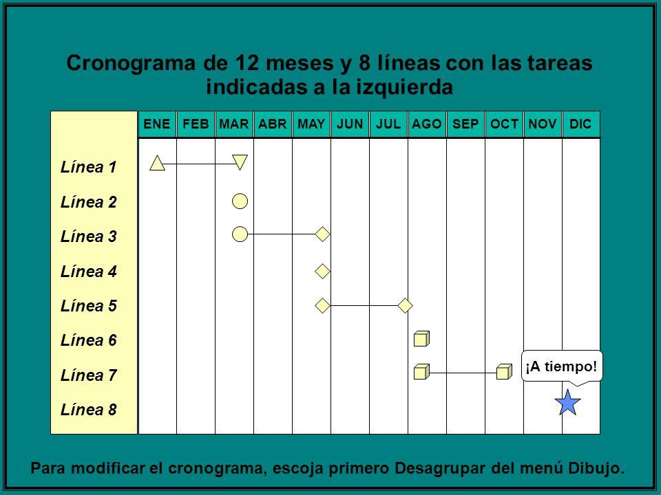 Cronograma de 12 meses y 8 líneas con las tareas indicadas a la izquierda