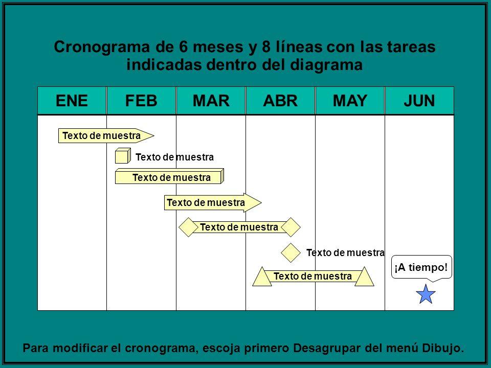 Cronograma de 6 meses y 8 líneas con las tareas indicadas dentro del diagrama