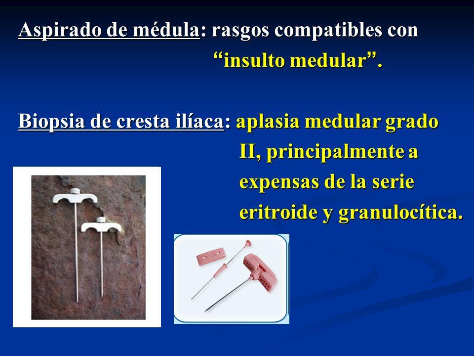 Aspirado de médula: rasgos compatibles con insulto medular