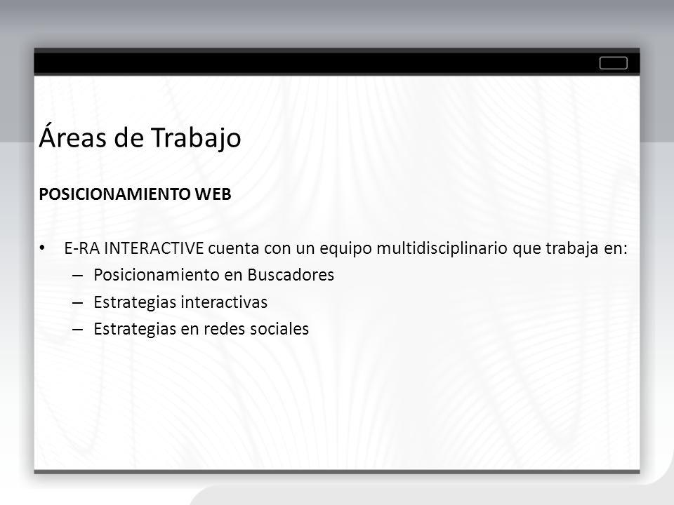 Áreas de Trabajo POSICIONAMIENTO WEB