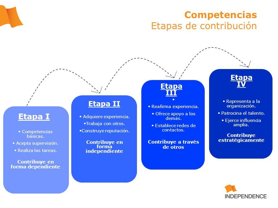 Competencias Etapas de contribución