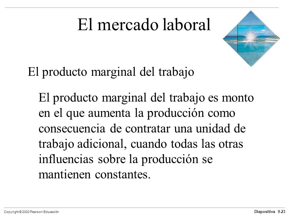 El mercado laboral El producto marginal del trabajo