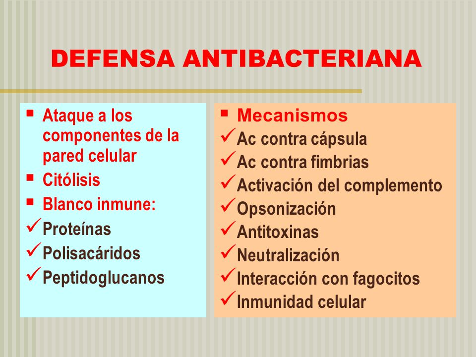 DEFENSA ANTIBACTERIANA