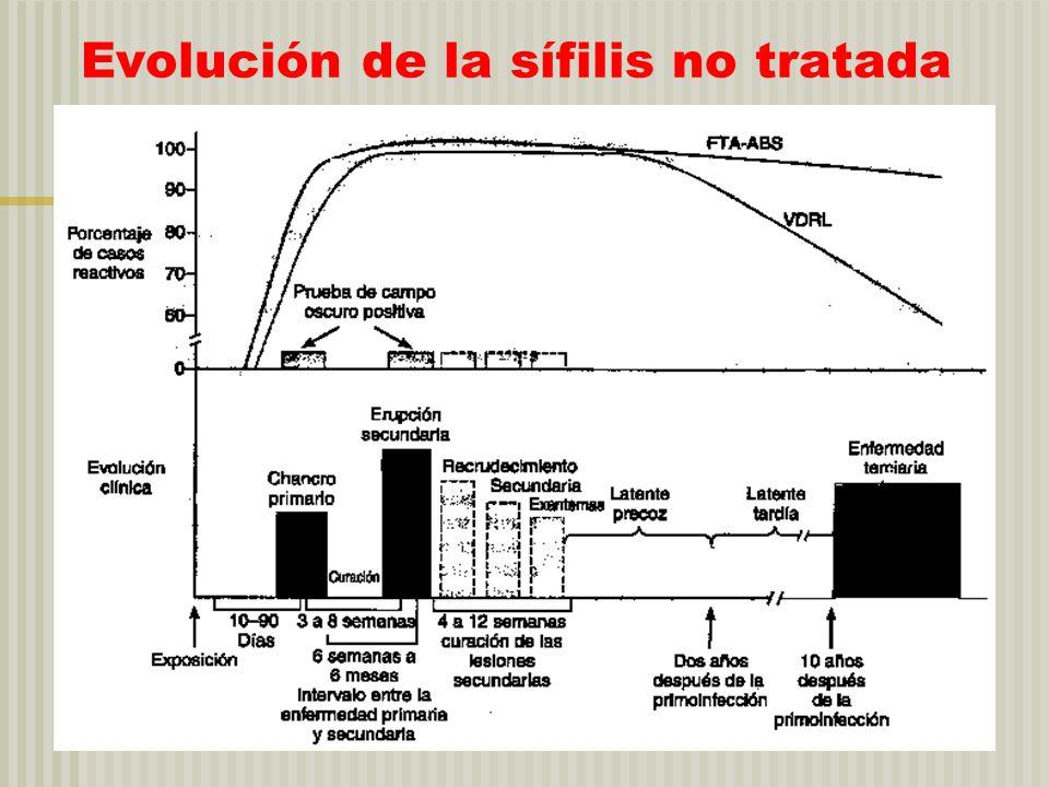 Evolución de la sífilis no tratada