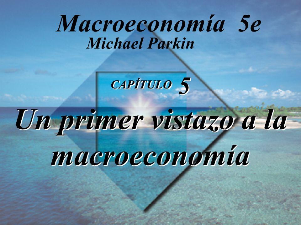 CAPÍTULO 5 Un primer vistazo a la macroeconomía